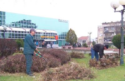 Се уредуваат зелените површини на плоштадот