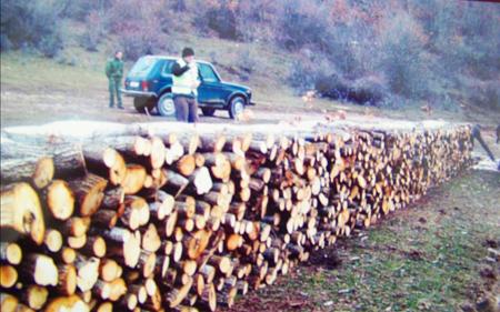Без лиценца вршел превоз на дрва