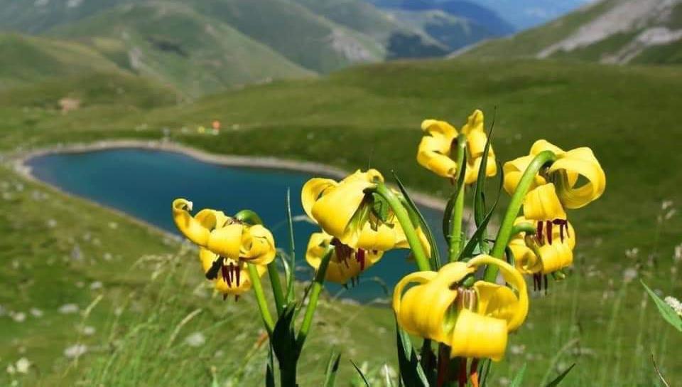 Осоговските планини прогласени за заштитено подрачје – заштитен предел
