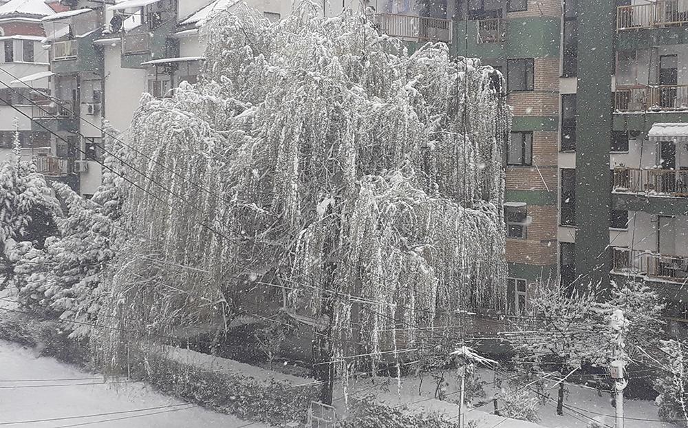 Во Куманово 8 см снег, минималната температура минус 8
