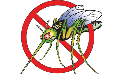Трета фаза од терестичкo прскање против комарци во Куманово