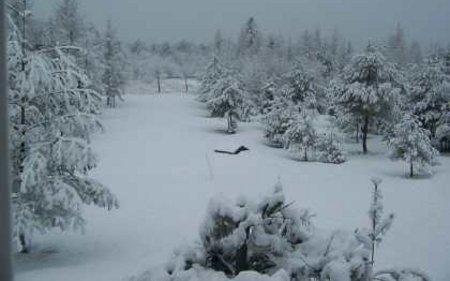 Во Куманово 14 сантиметри снег, -5 степени минимална температура
