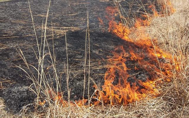 За едно деноноќие 7 пожари во кумановско