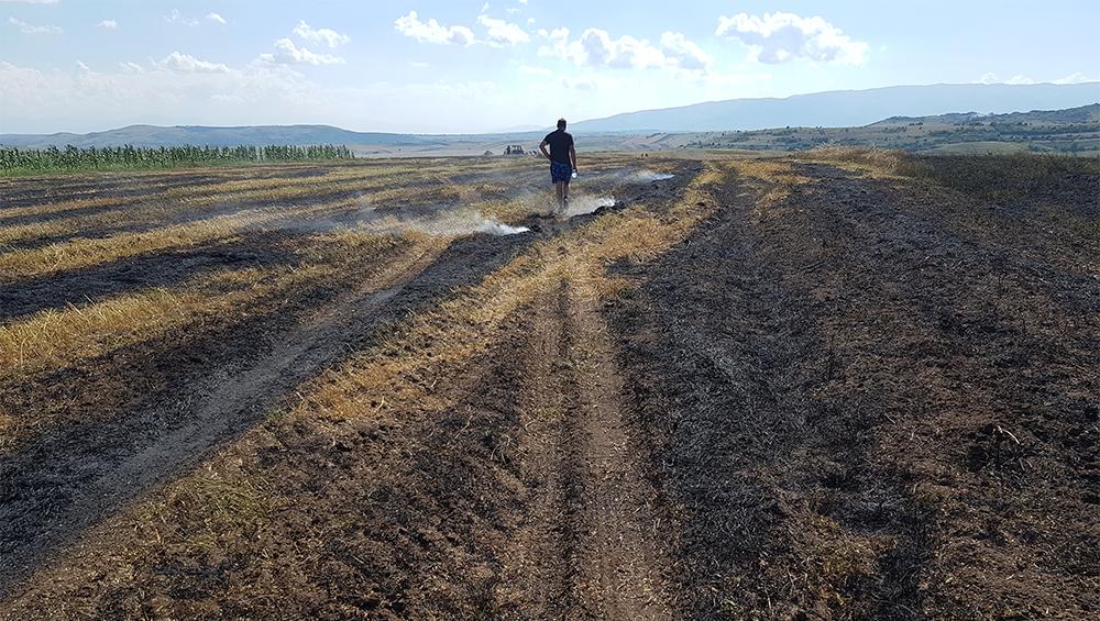 Изгореа над 10 хектари жито во Младо Нагоричане
