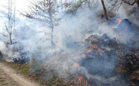 Надлежните апелираат да не се пали огин на отворено