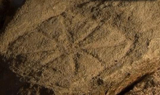 Предавања за карпеста уметност во Словенија