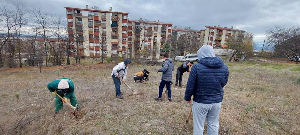 УМС на ВМРО-ДПМНЕ засади 100 садници на Даштев рид